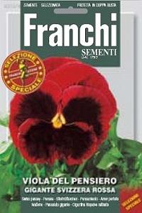 Виола швейцарские гиганты красная GIGANTE SVIZZERA BIANCO (1гр) DBFS 355/9