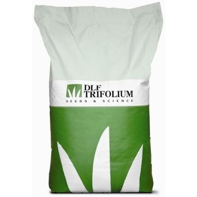 Семена Овсянница тростниковая STARLETT 25 кг